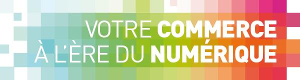 Numérique CCI Cantal